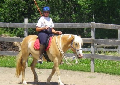 woman riding golden Haflinger mare using a carrot stick and not holding reins
