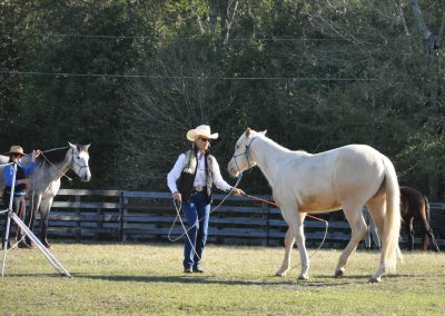 Woman in white cowboy hat asking young palomino horse to go sideways in front of her.