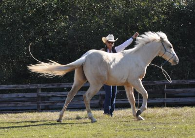 Woman in white cowboy hat raising her arm to ask young palomino horse to canter.