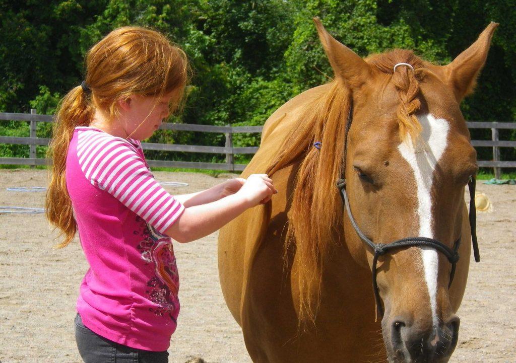 girl with chestnut hair braiding chestnut horse's mane