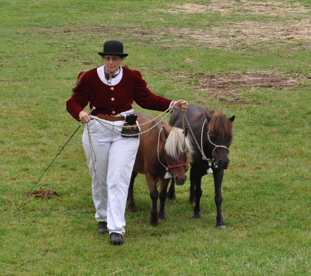 Woman in fancy red jacket and white pants with brown pony and black pony.